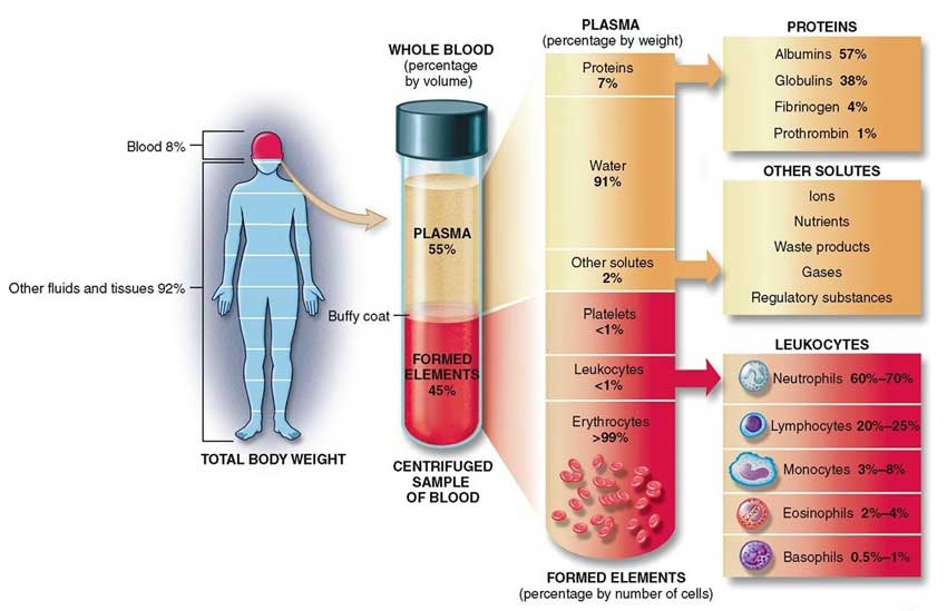 Blood constituents