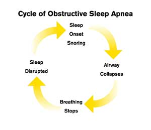 Apnoea Cycle