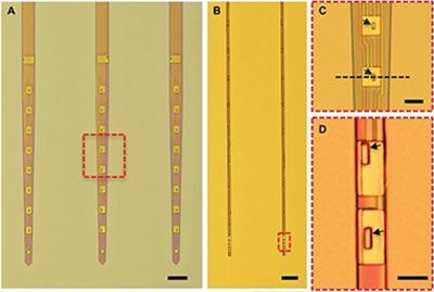 Nanoelectronic Thread 1