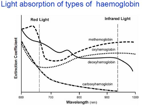 light absorbtion of haemoglobin